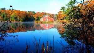 2nd Place - Jessica Smith - Fall on Leonard Lake